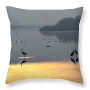 Sunrise Over The Hula Valley Israel 1 Throw Pillow