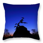 Sunrise At The Navy  Merchant Marine Memorial Throw Pillow