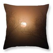 Sunrise  At The Pecan Grove Southern Alabama Throw Pillow