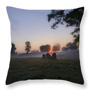 Sunrise At Whitemarsh Throw Pillow