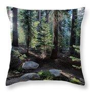 Sunrise Creek Throw Pillow
