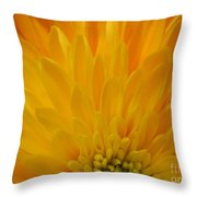 Sunrise Dahlia Abstract Throw Pillow