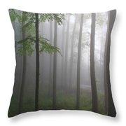 Sunrise Fog Throw Pillow