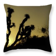 Sunrise In Dr Seuss Land Throw Pillow