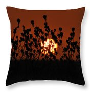 Sunrise In South Texas Throw Pillow