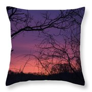 Sunrise January 21 2012 Throw Pillow