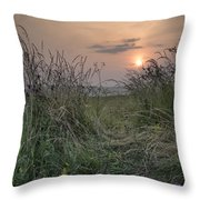 Sunrise Landscape In Summer Looking Through Wild Thistles And Gr Throw Pillow