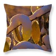 Sunrise On Autumn Snow Throw Pillow
