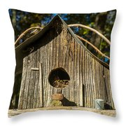 Sunrise On Birdhouse Homestead Throw Pillow