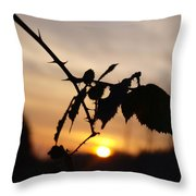 Sunrise On Cold Morning Throw Pillow