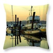 Sunrise On The Petaluma River Throw Pillow