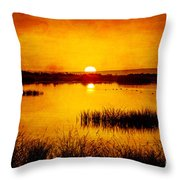 Sunrise On The Pond Throw Pillow