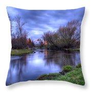 Sunrise On The Rose Farm Throw Pillow