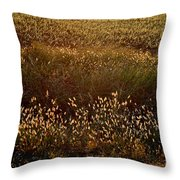Sunrise On Wild Grass Throw Pillow