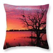 Sunrise Over Coongee Lakes Throw Pillow