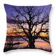 Sunrise Over Coongee Lakes With Moon.  Throw Pillow