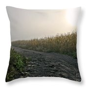 Sunrise Over Country Road Throw Pillow by Olivier Le Queinec