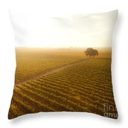 Sunrise Over The Vineyard Throw Pillow