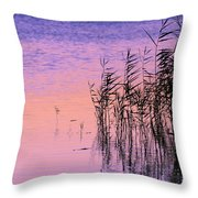 Sunrise Reeds Throw Pillow