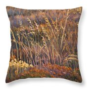 Sunrise Reflections On Dried Grass Throw Pillow