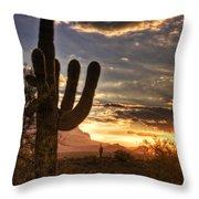 Sunrise Splendor  Throw Pillow