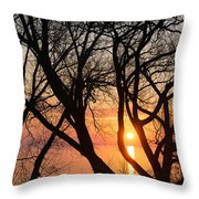 Sunrise Through The Chaos Of Willow Branches Throw Pillow