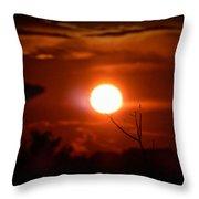 Sunset - Stuck On Tree Branch Throw Pillow