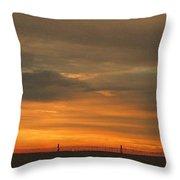 Sunset 1013 Throw Pillow by David Dehner