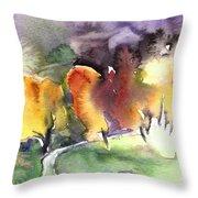 Sunset 49 Throw Pillow