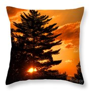 Sunset And Pine Tree  Throw Pillow