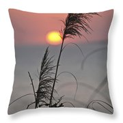 Sunset At 188 Mm Focal Length Throw Pillow