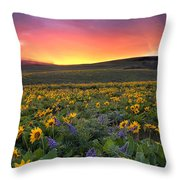 Sunset At Columbia Hills State Park Throw Pillow