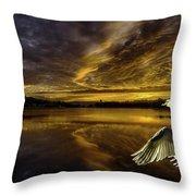 Sunset At Swan Lake  Throw Pillow