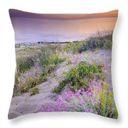 Sunset At The Beach  Flowers On The Sand Throw Pillow