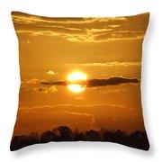 Sunset Bear Throw Pillow