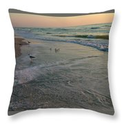 Sunset Bird Patrol Throw Pillow