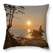 Sunset De Agave Throw Pillow