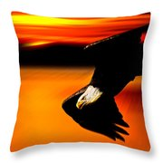 Sunset Dive  Throw Pillow