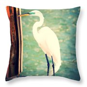 Sunset Dock Visitor Throw Pillow