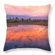 Everglades Afterglow Throw Pillow