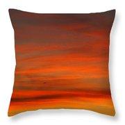 Sunset Flight Throw Pillow