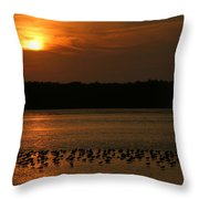 Sunset Flock Throw Pillow