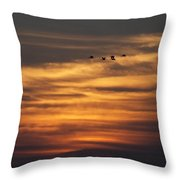 Sunset Flyby Fulton Texas Throw Pillow