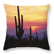 Sunset Glory Throw Pillow