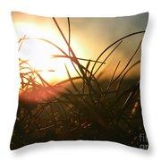 Sunset Grass 1 Throw Pillow