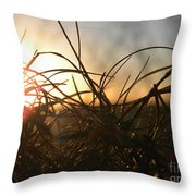 Sunset Grass 2 Throw Pillow
