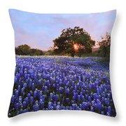 Sunset In Bluebonnet Field Throw Pillow