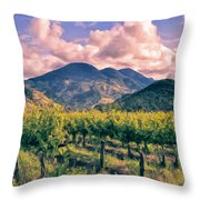 Sunset In Napa Valley Throw Pillow