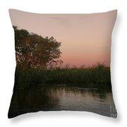 Sunset In Teh Pantenal Throw Pillow