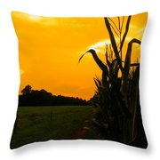 Sunset In The Cornfield Throw Pillow